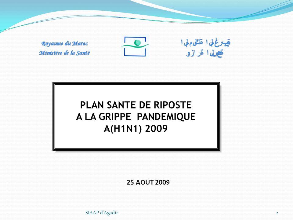 A LA GRIPPE PANDEMIQUE A(H1N1) 2009