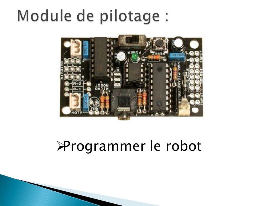 Module de pilotage : Programmer le robot