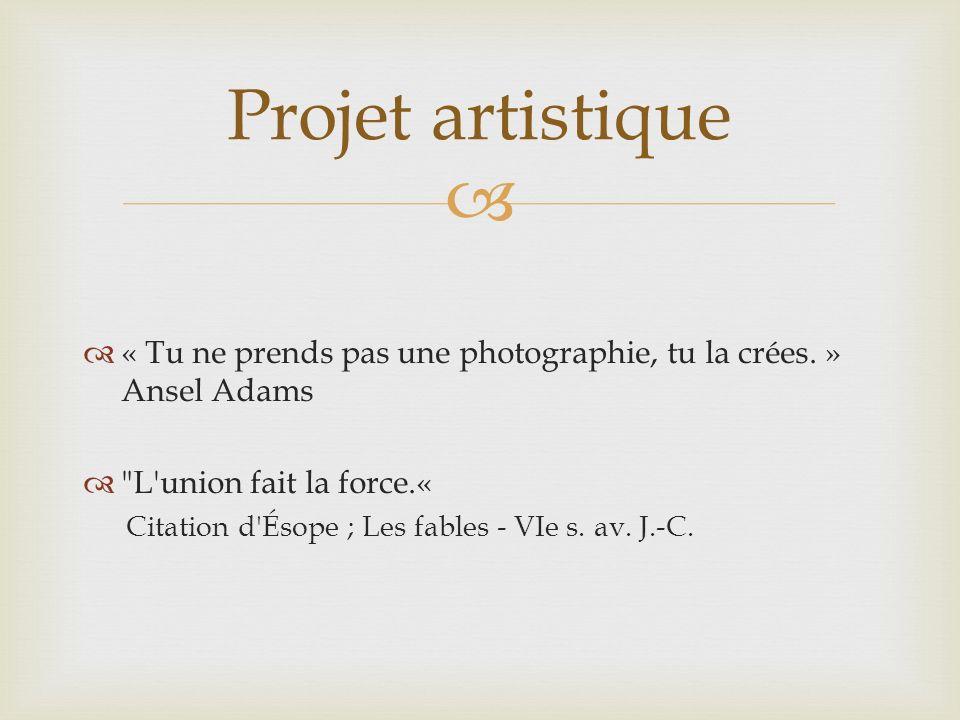 Projet artistique « Tu ne prends pas une photographie, tu la crées. » Ansel Adams. L union fait la force.«