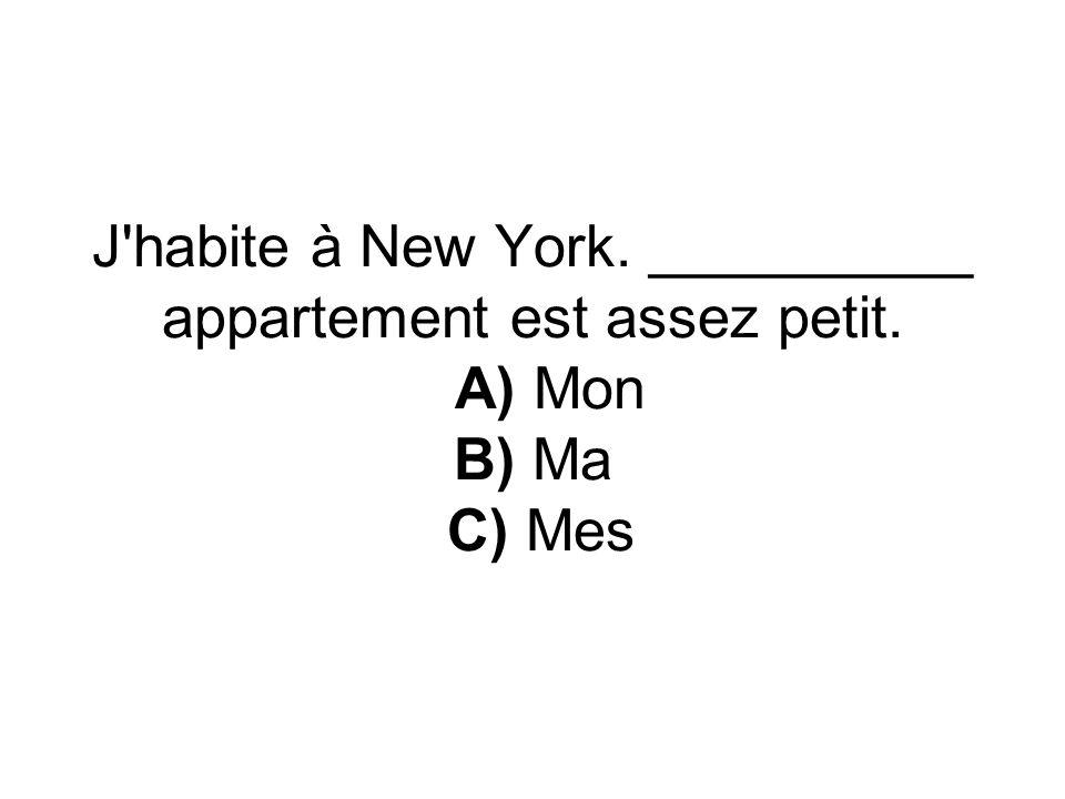 J habite à New York. __________ appartement est assez petit