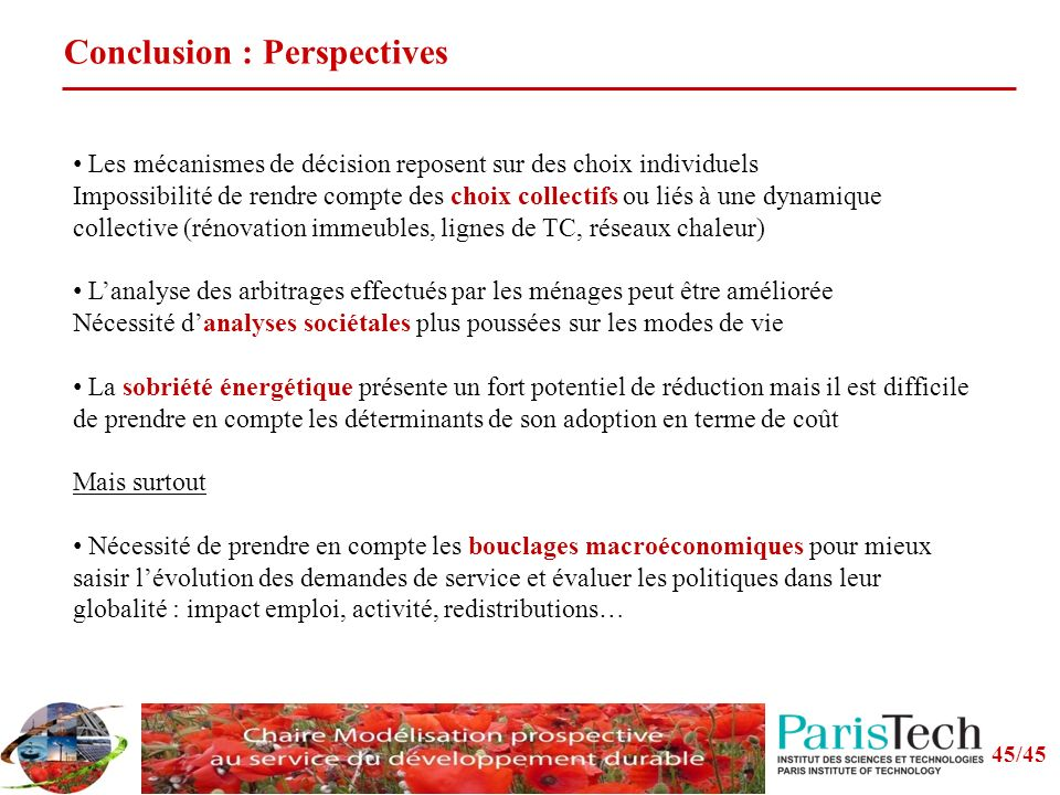 Conclusion : Perspectives