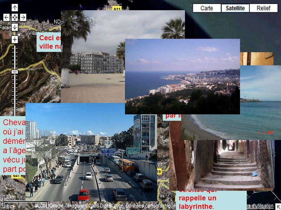 Ceci est une vue de haut de ma ville natale, Alger