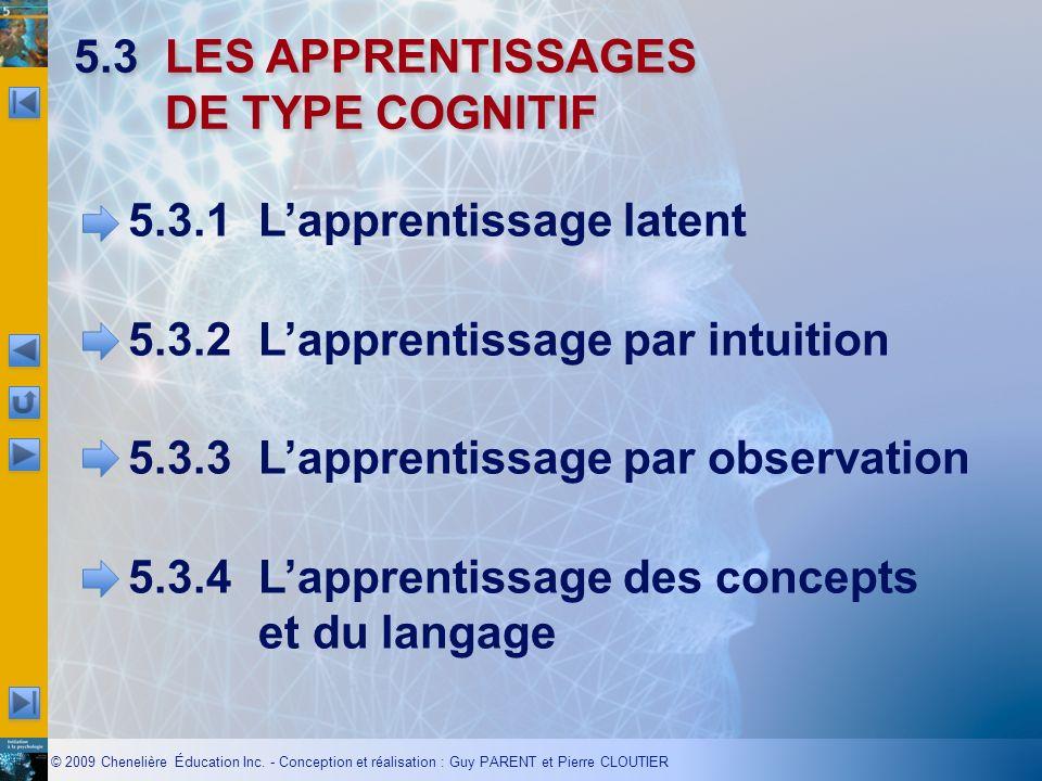 5.3 LES APPRENTISSAGES DE TYPE COGNITIF