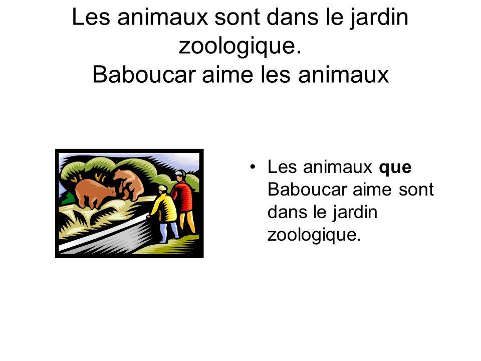 Les animaux sont dans le jardin zoologique. Baboucar aime les animaux