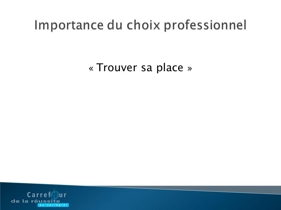 Importance du choix professionnel