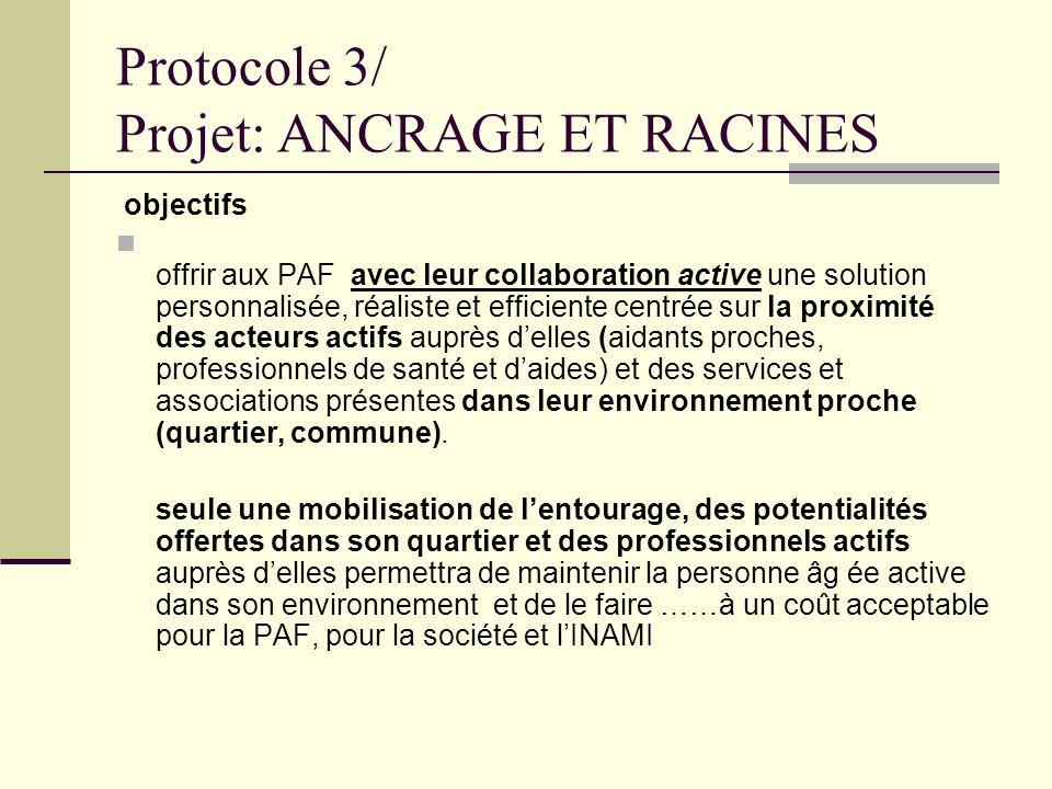 Protocole 3/ Projet: ANCRAGE ET RACINES