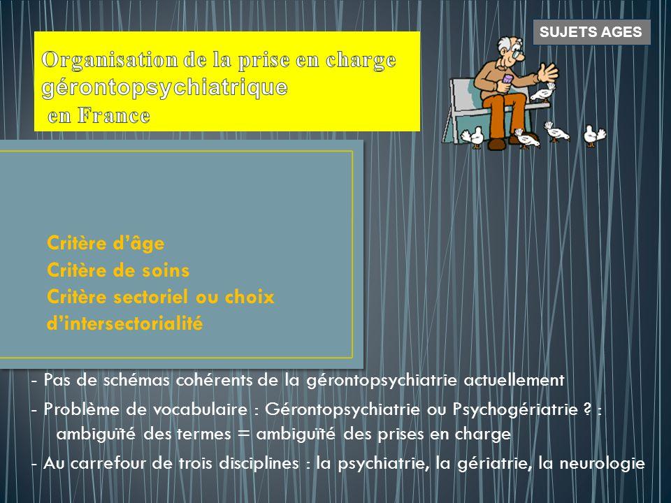 Organisation de la prise en charge gérontopsychiatrique en France