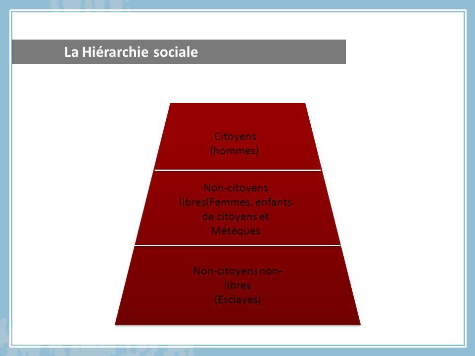 La Hiérarchie sociale Citoyens (hommes)