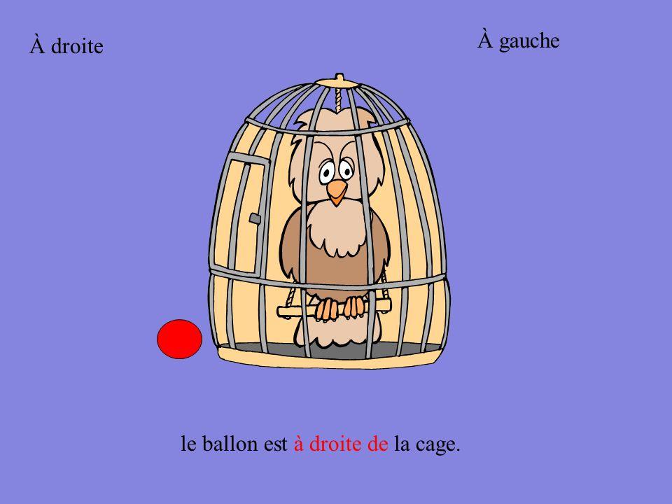 À gauche À droite le ballon est à droite de la cage.