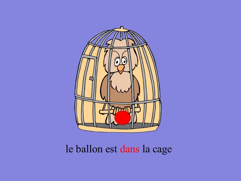 le ballon est dans la cage