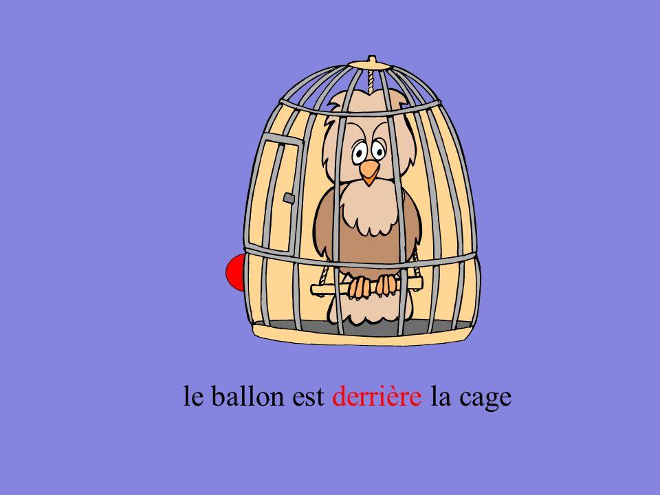 le ballon est derrière la cage