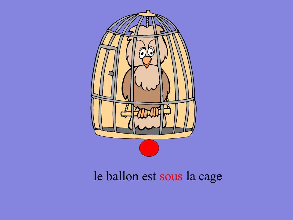 le ballon est sous la cage