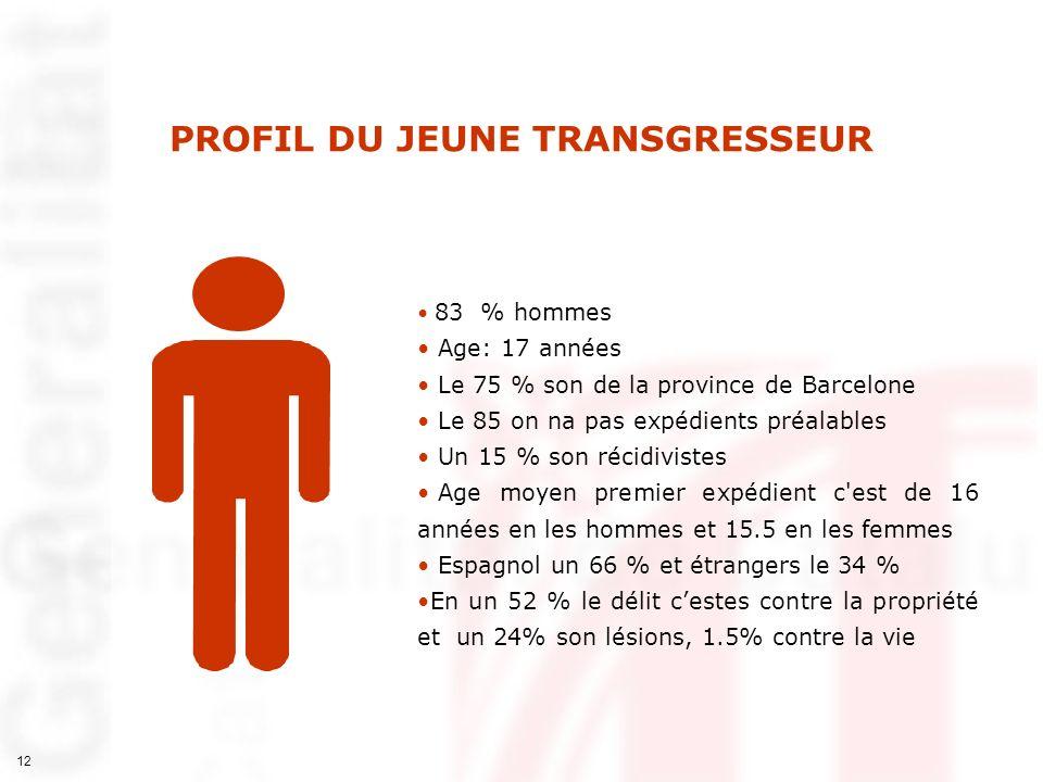 PROFIL DU JEUNE TRANSGRESSEUR