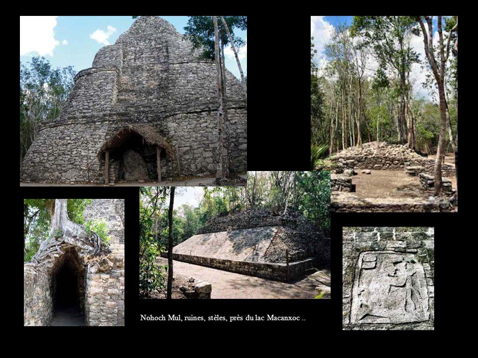 Nohoch Mul, ruines, stèles, près du lac Macanxoc ..