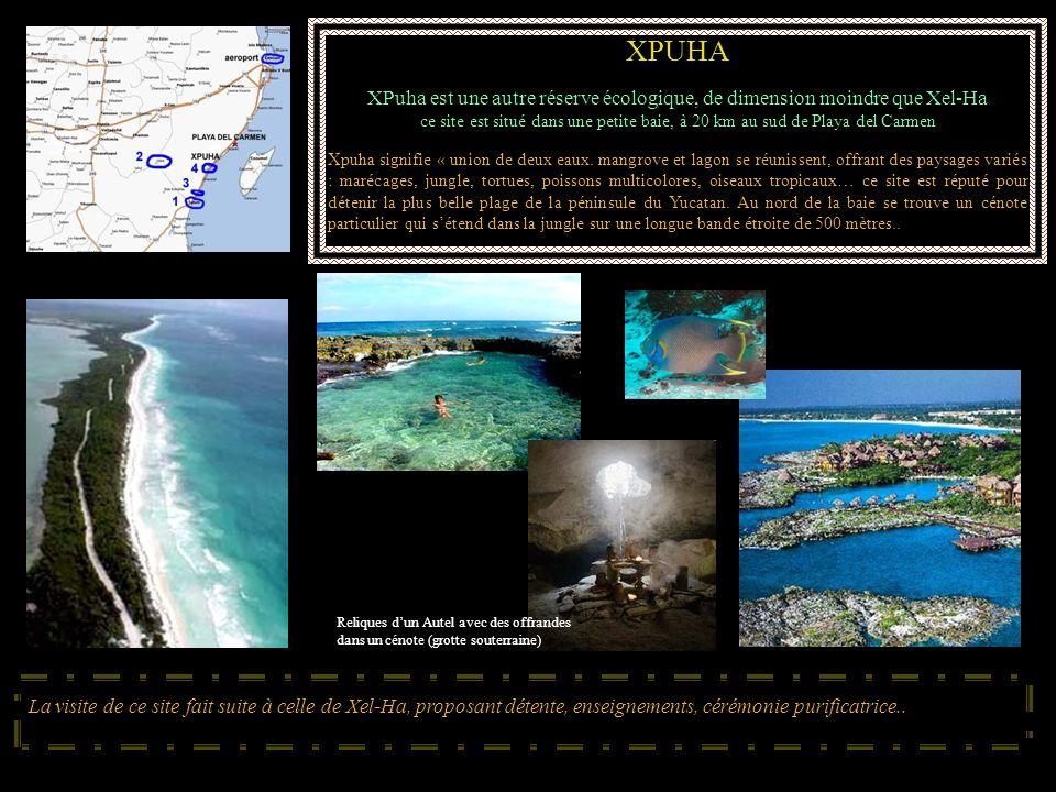XPUHA XPuha est une autre réserve écologique, de dimension moindre que Xel-Ha.