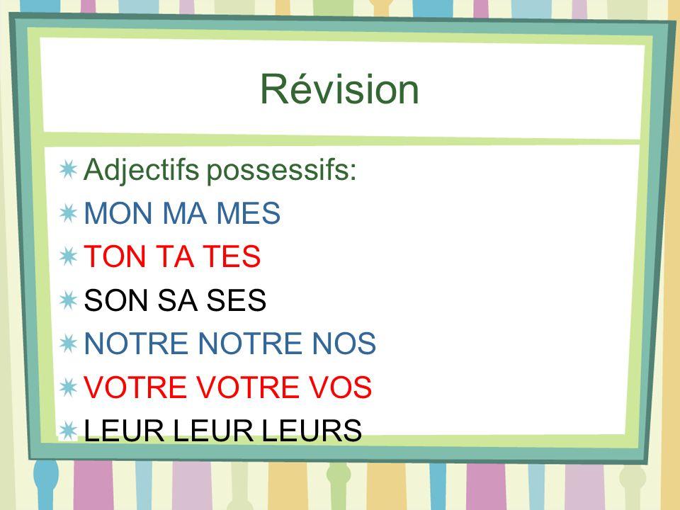 Révision Adjectifs possessifs: MON MA MES TON TA TES SON SA SES