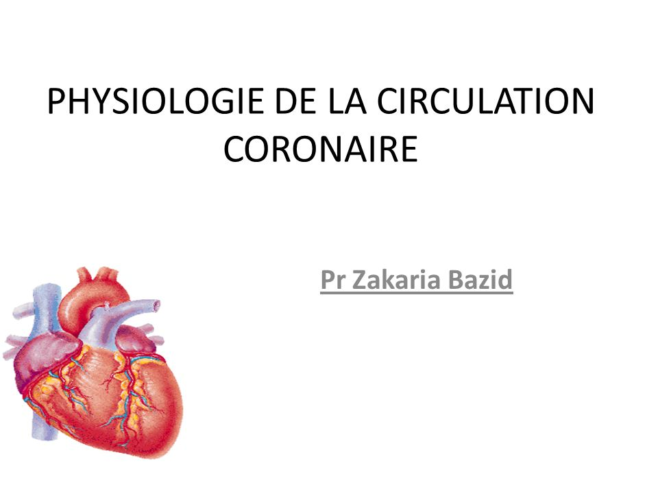 Physiologie de la circulation coronaire