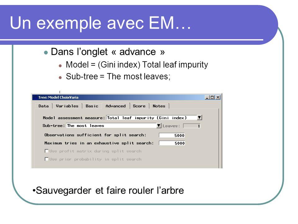 Un exemple avec EM… Dans l'onglet « advance »