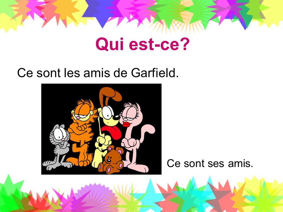 Qui est-ce Ce sont les amis de Garfield. Ce sont ses amis.
