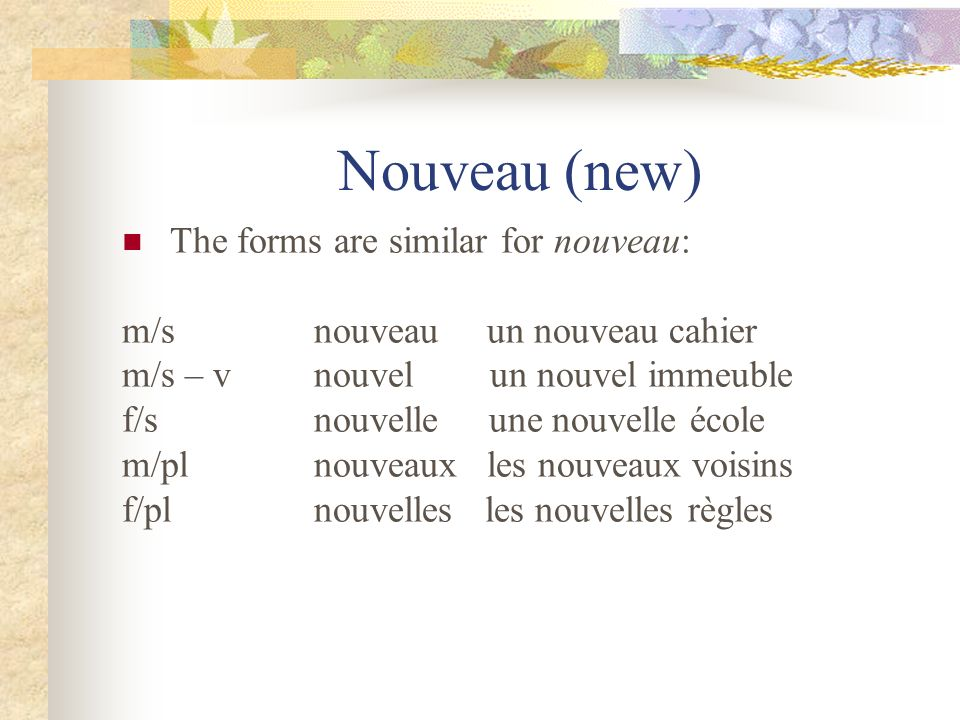 Nouveau (new) The forms are similar for nouveau: