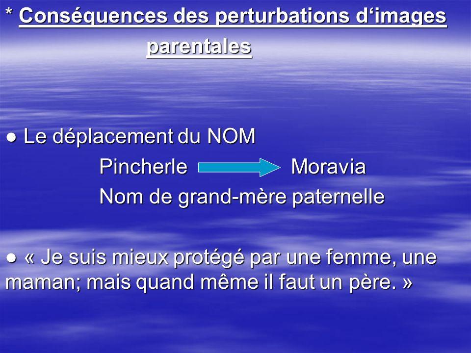 * Conséquences des perturbations d'images