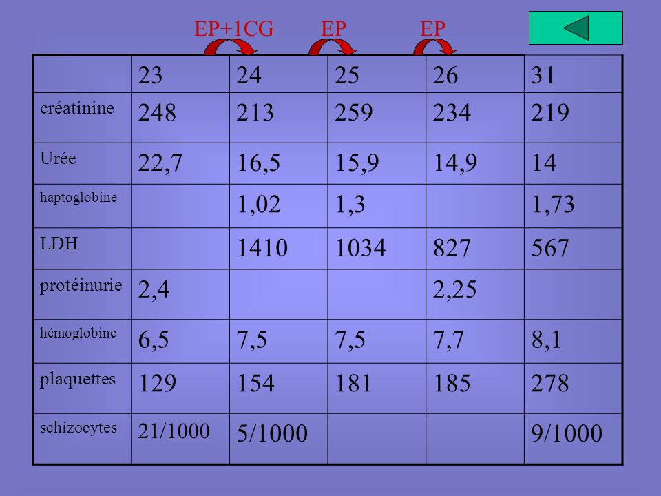 EP+1CG EP. EP. 23. 24. 25. 26. 31. créatinine. 248. 213. 259. 234. 219. Urée. 22,7. 16,5.