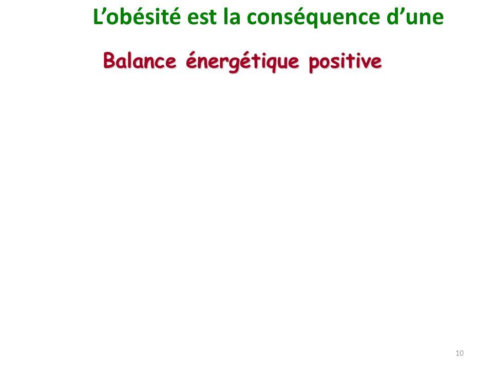 L'obésité est la conséquence d'une Balance énergétique positive