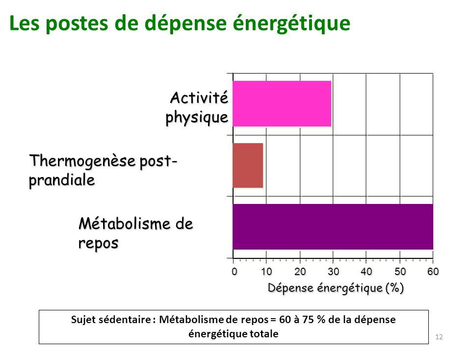 Dépense énergétique (%)