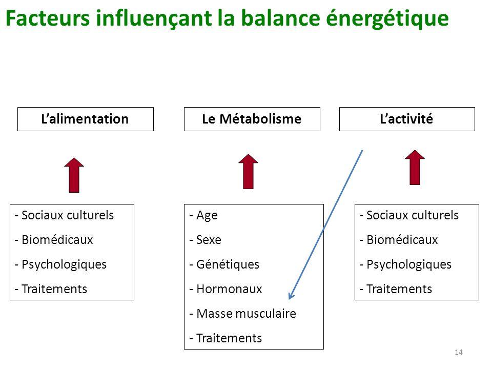 Facteurs influençant la balance énergétique