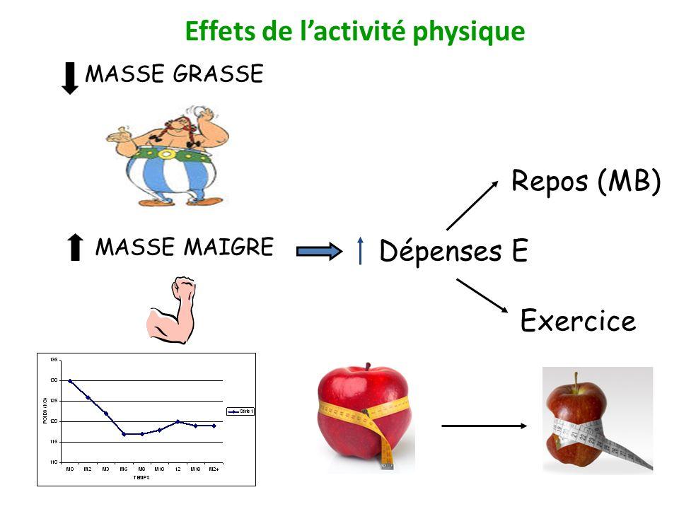 Effets de l'activité physique