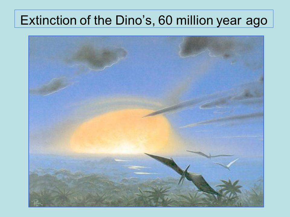 Extinction of the Dino's, 60 million year ago