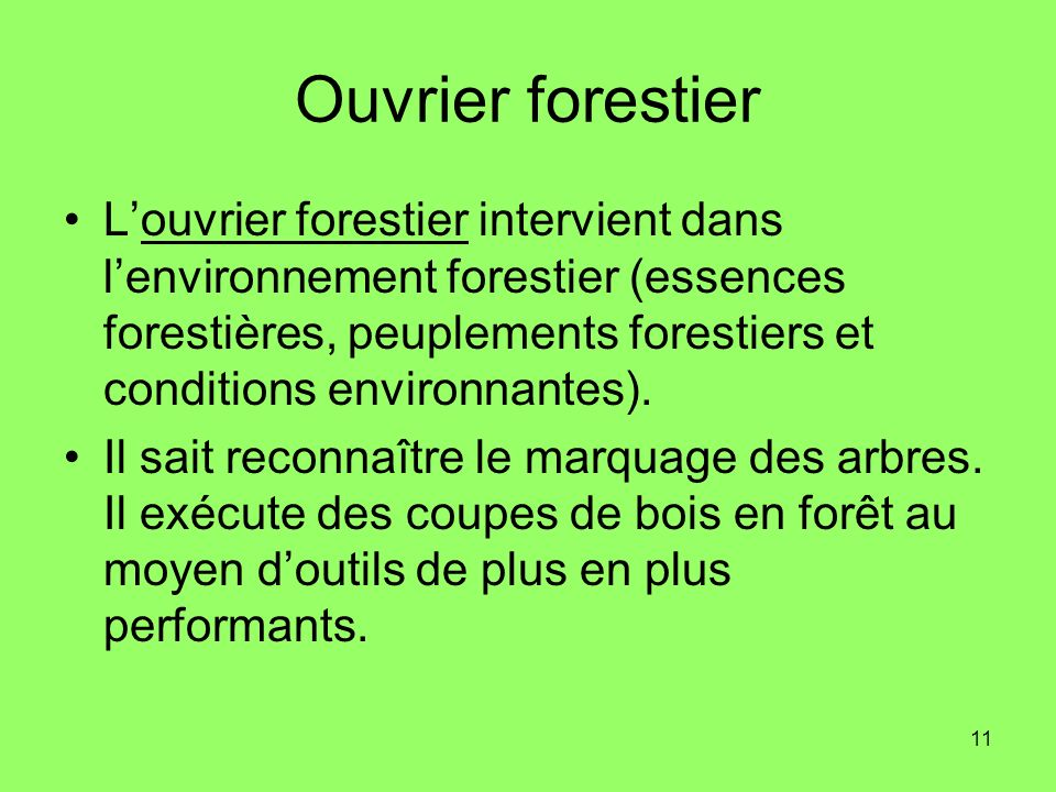Ouvrier forestier