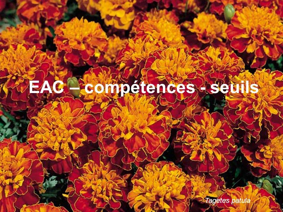 EAC – compétences - seuils