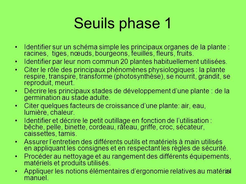 Seuils phase 1 Identifier sur un schéma simple les principaux organes de la plante : racines, tiges, nœuds, bourgeons, feuilles, fleurs, fruits.