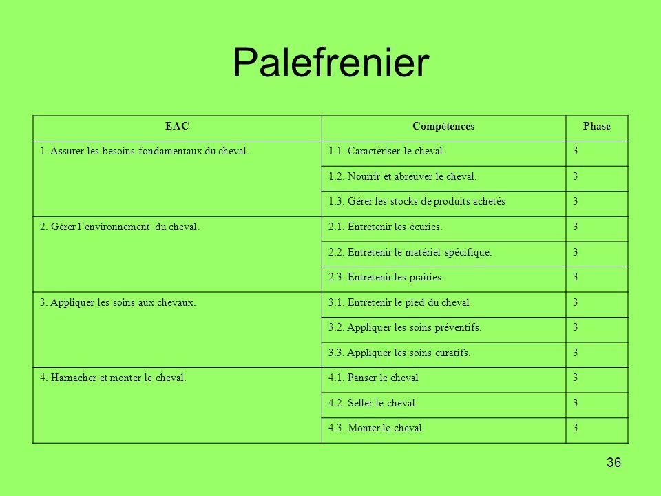 Palefrenier EAC Compétences Phase