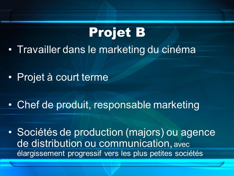 Projet B Travailler dans le marketing du cinéma Projet à court terme