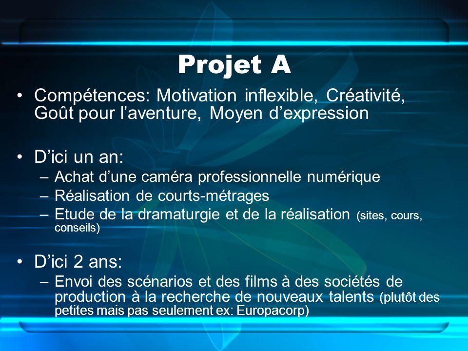 Projet A Compétences: Motivation inflexible, Créativité, Goût pour l'aventure, Moyen d'expression. D'ici un an: