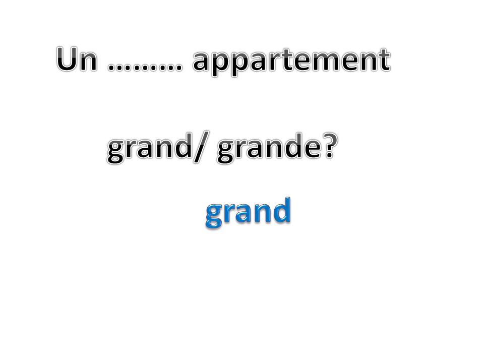 Un ……… appartement grand/ grande grand