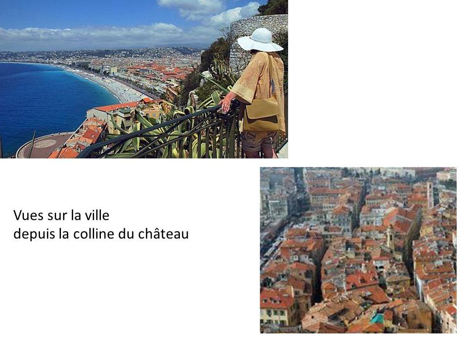 Vues sur la ville depuis la colline du château