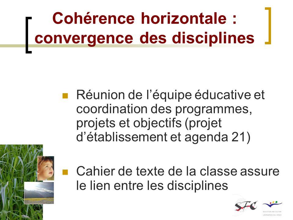 Cohérence horizontale : convergence des disciplines