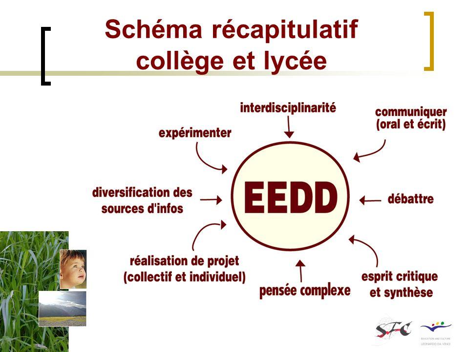Schéma récapitulatif collège et lycée