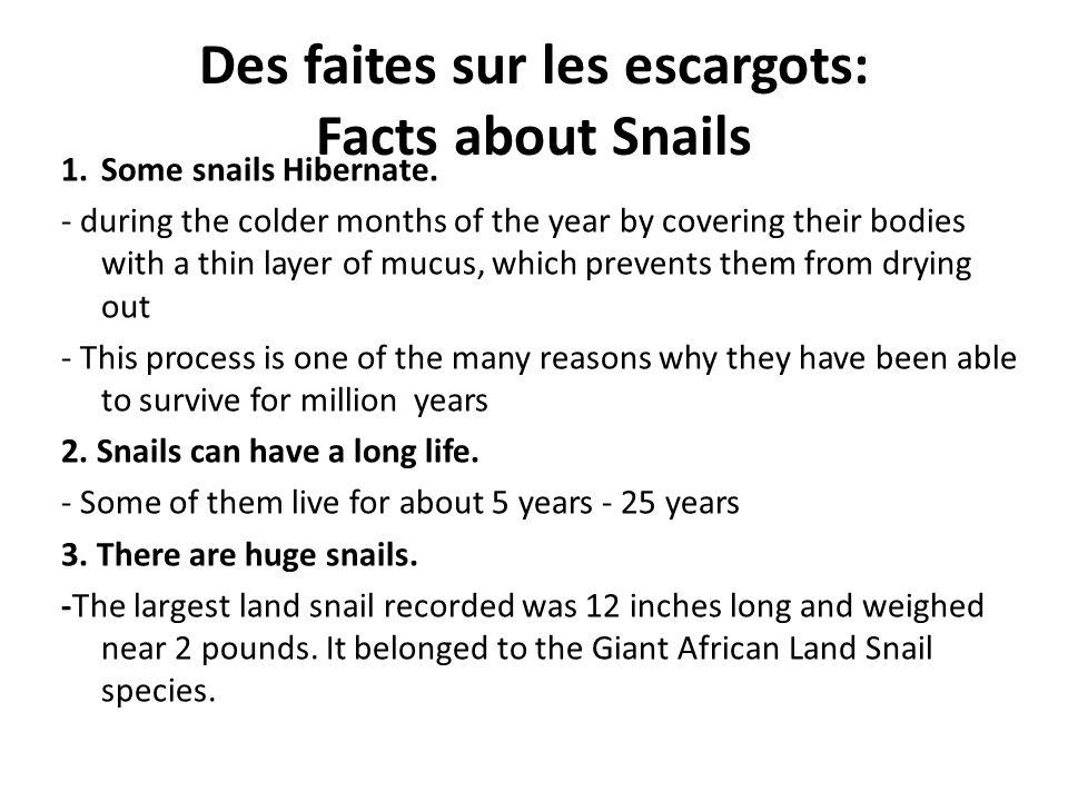 Des faites sur les escargots: Facts about Snails