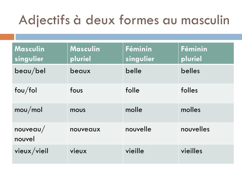 Adjectifs à deux formes au masculin