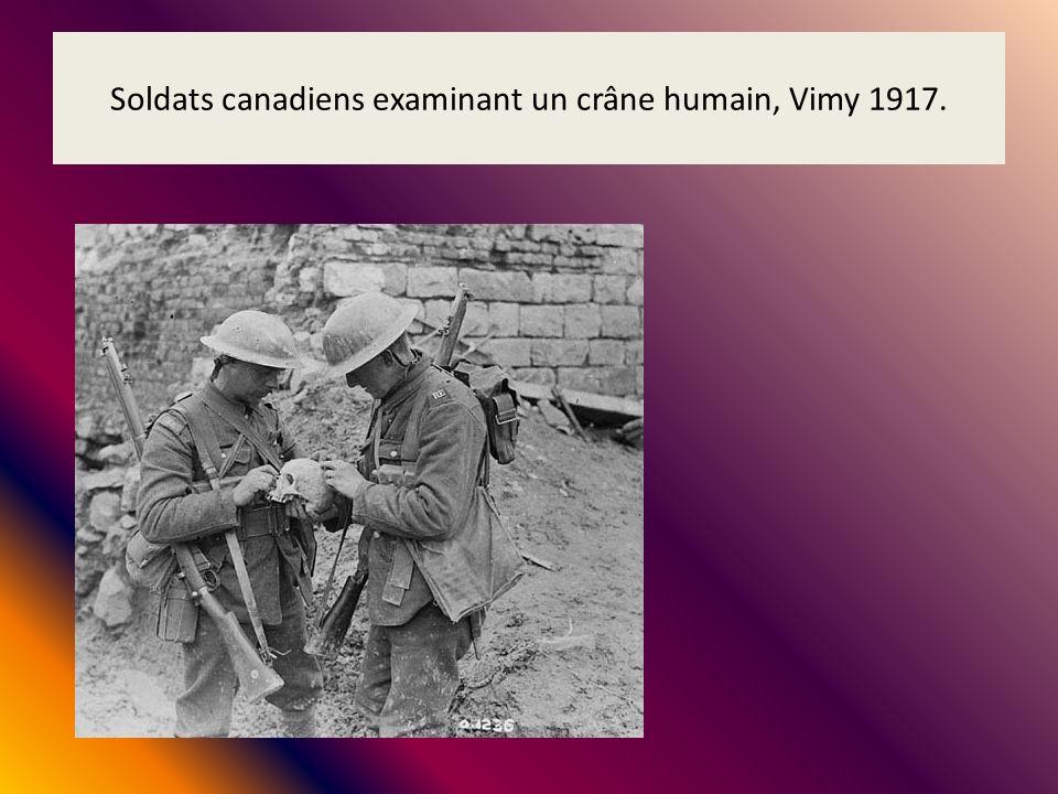 Soldats canadiens examinant un crâne humain, Vimy 1917.
