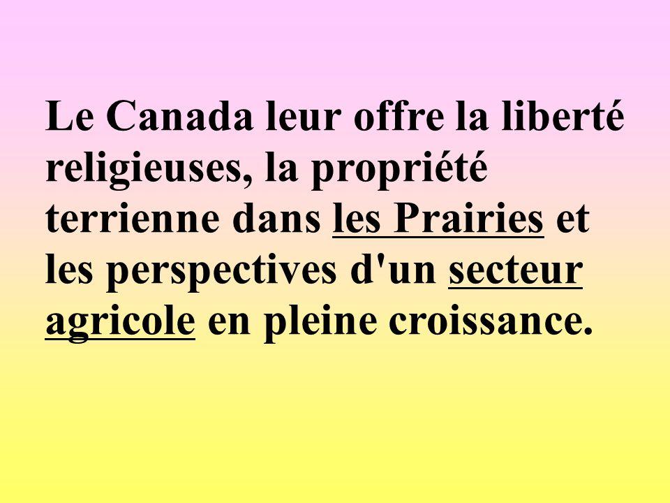 Le Canada leur offre la liberté religieuses, la propriété terrienne dans les Prairies et les perspectives d un secteur agricole en pleine croissance.