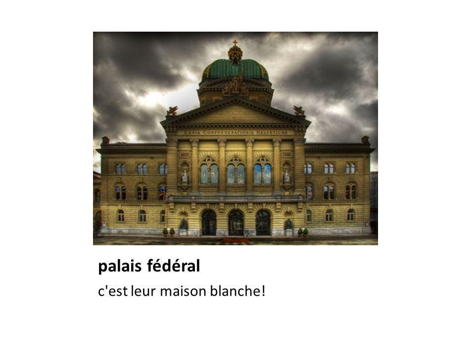 palais fédéral c est leur maison blanche!