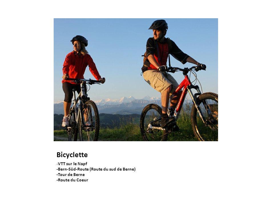 Bicyclette -VTT sur le Napf -Bern-Süd-Route (Route du sud de Berne)
