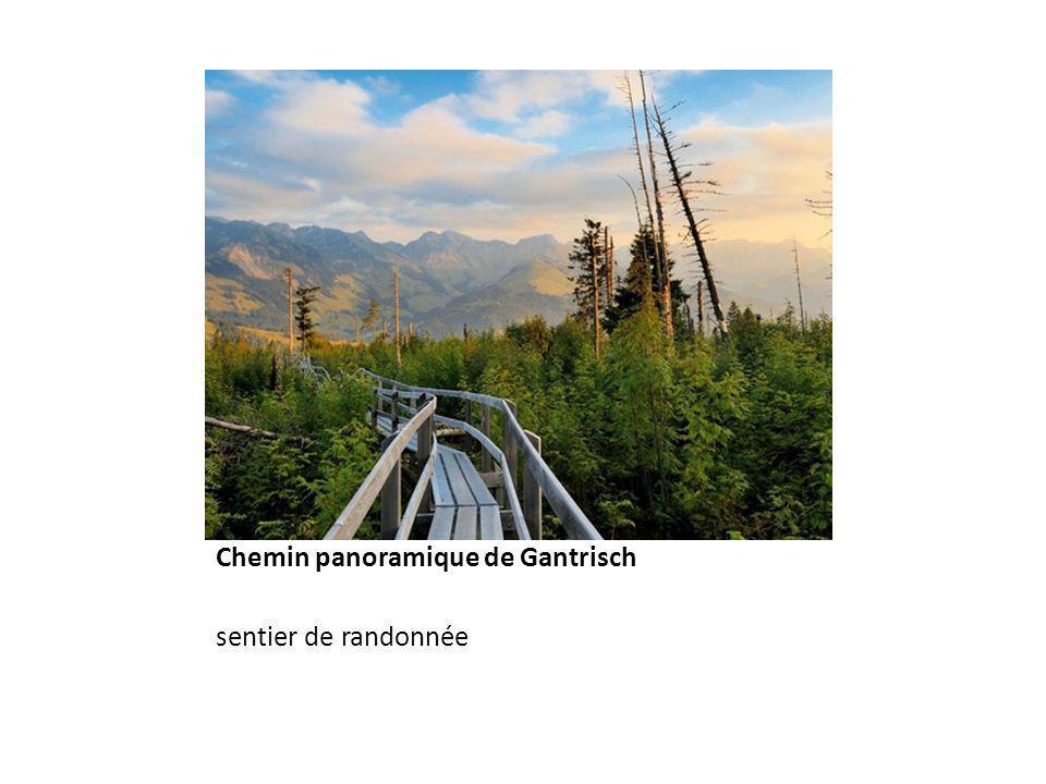 Chemin panoramique de Gantrisch