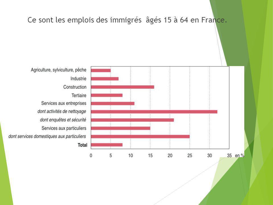 Ce sont les emplois des immigrés âgés 15 à 64 en France.