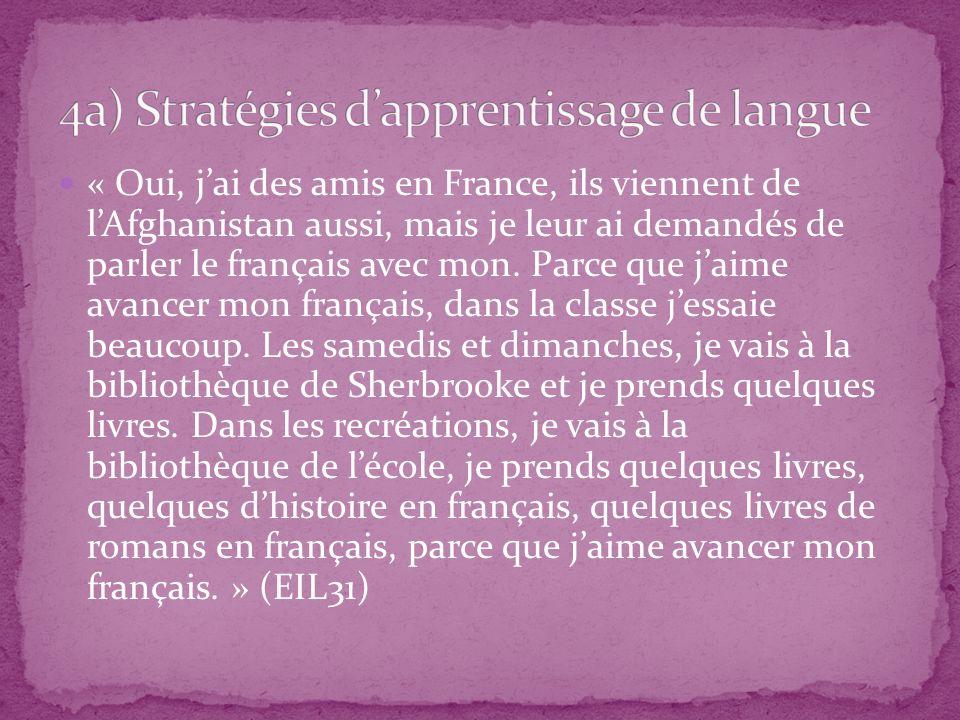 4a) Stratégies d'apprentissage de langue